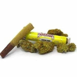 Lemon Tree Dankwoods